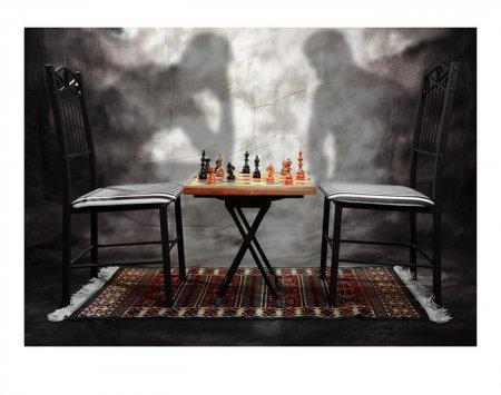 Самая длинная партия в шахматы