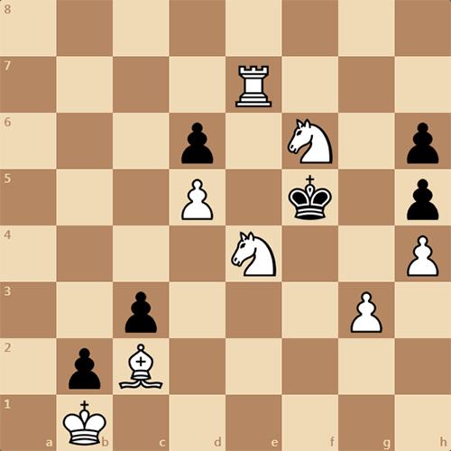 Сможете решить эту задачу на мат в 3 хода ?