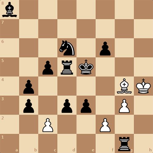 Кооперативный мат в 2 хода, задача по шахматам