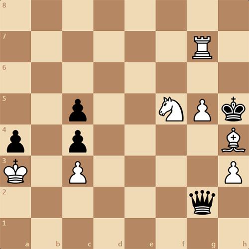Шахматный этюд, автор Я. Тимман, 2004 год
