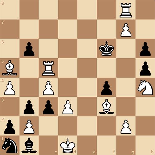 Роскошная задача по шахматам, красивое решение